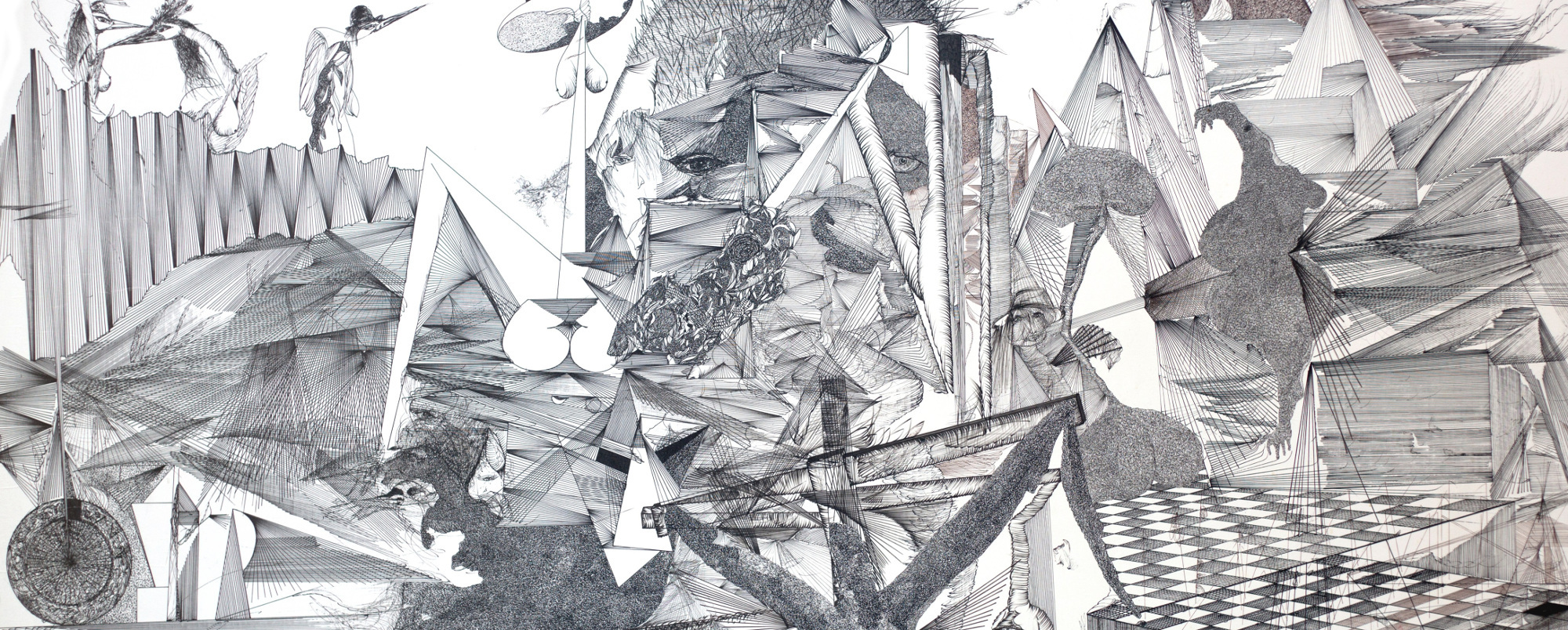 Miro Niklewicz: Frühling der Schmetterlinge
